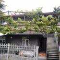 Гостевой дом в Сухуме